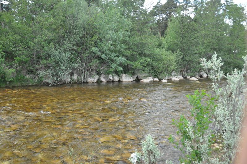Río Revinuesa en Soria
