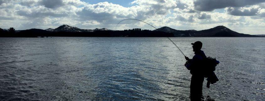 pesca en embalse